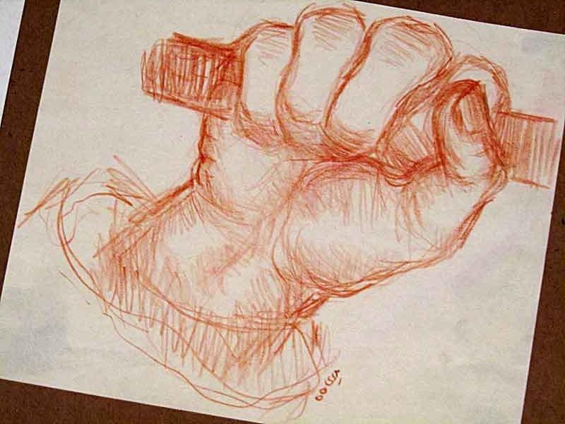 anatomy of hand : 1971 – 1976