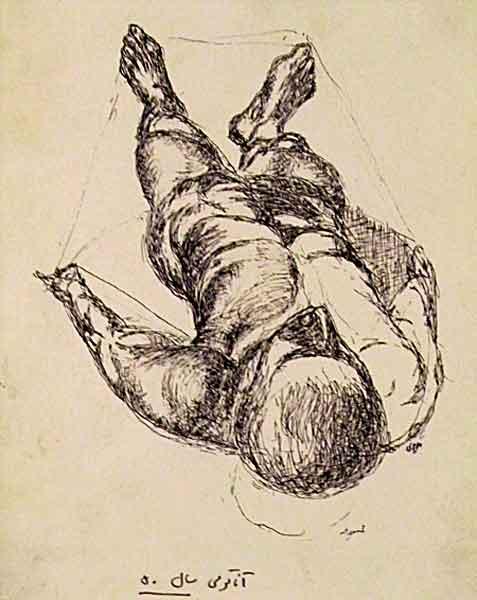 anatomy : 1971 – 1976